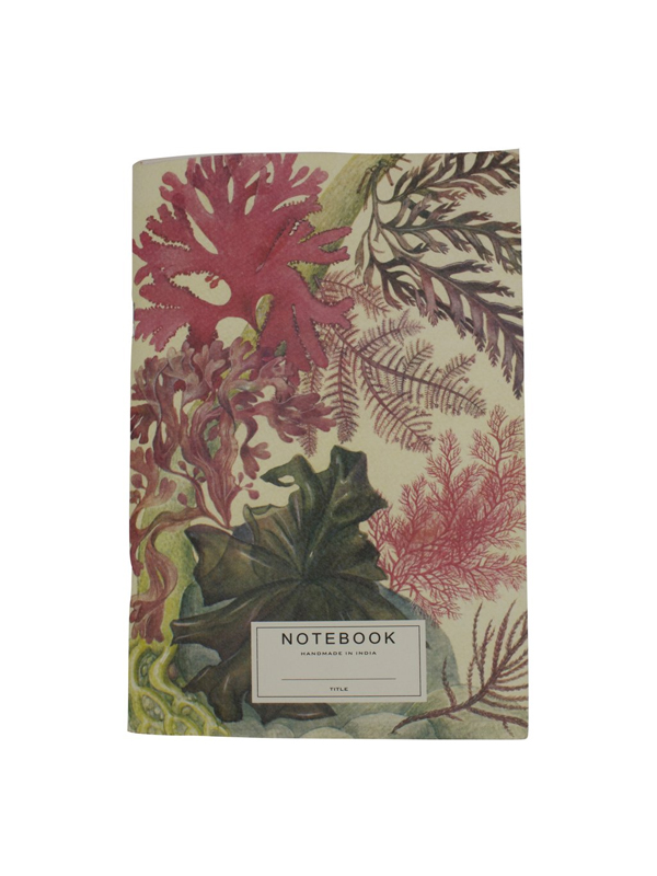 NOTEBOOK CORAL